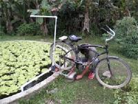 bicipompa, utilizzare l'acqua con energia pulita